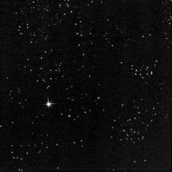 Serviette, Dunilin, schwarz Brilliance, 40 x 40 cm