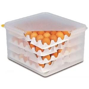 Eier-Box GN 2/3, mit luftdichtem Deckel
