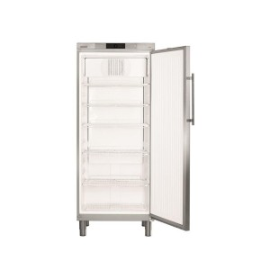 Kühlschrank GKv 5790