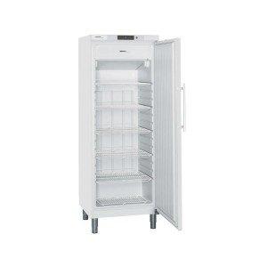 Tiefkühlschrank GGv 5810