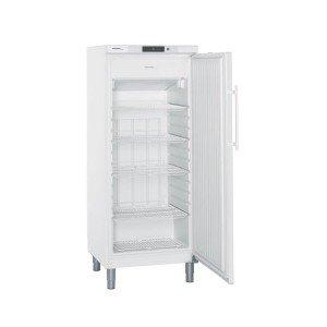 Tiefkühlschrank GGv 5010