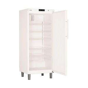 Kühlschrank GKv 5710