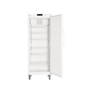 Kühlschrank GKv 6410